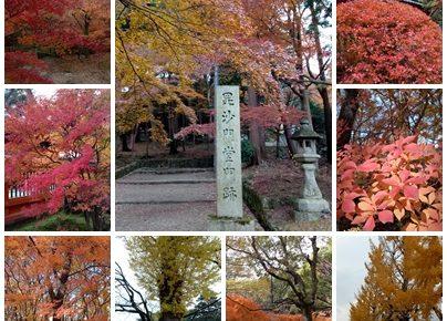 關西秋季熱血追楓(關西機場,京都,大阪,和歌山 /單人旅遊/5天)